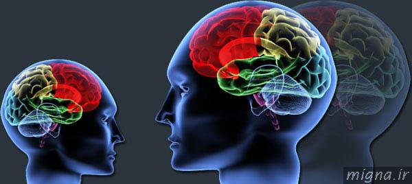 دانلود پاورپوینت روانشناسی احساس و ادراک